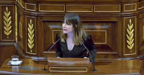 La diputada granadina Ana Terrón en el Congreso de los Diputados_