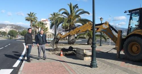 Medio Ambiente mejora las zonas verdes del vial de la playa de Salobreña