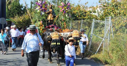 Centenares de romeros acompañaron a San Isidro hasta Torrecuevas.png