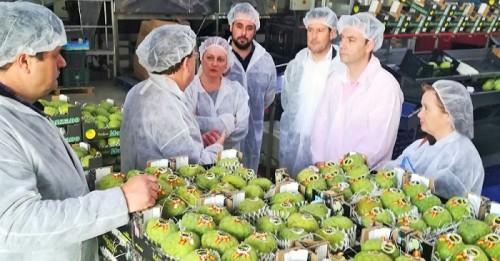 Incentivos de la Junta para modernizar instalaciones de las comercializadoras de frutas tropicales de la Costa Tropical