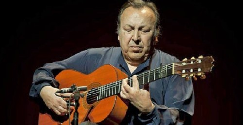 Paco Cepero, guitarrista flamenco.jpg
