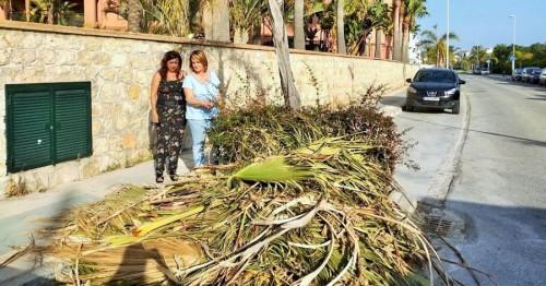El Partido Popular pide mejoras para Playa Granada.jpg