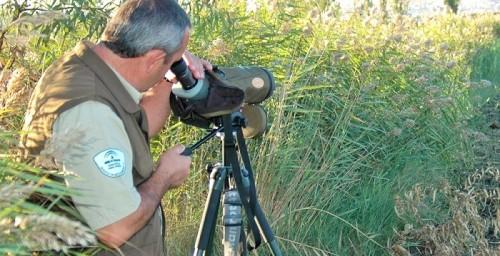 Medio Ambiente organiza un servicio extraordinario de vigilancia en la noche de San Juan en la Costa Tropical