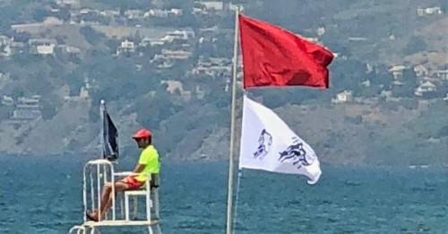 Bandera roja y de medusas en la playa de Salobreña
