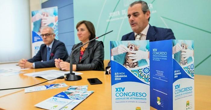 El Congreso Andaluz de Veterinarios abordará en Granada sus avances en tratamientos o protección animal.jpg