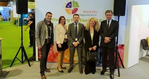 La Asociación Europea del Comercio de Frutas y Hortalizas de la UE se convierte en FrutasHortalizasEUROPA.jpg