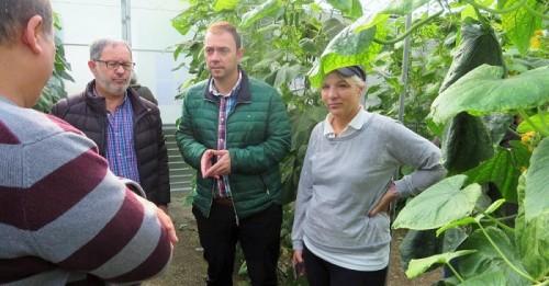 Siete organizaciones de Productores de Frutas y Hortalizas de Granada reciben 5,6 millones de la Junta
