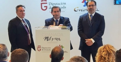 Fitur 2019_Diputación de Granada.jpg