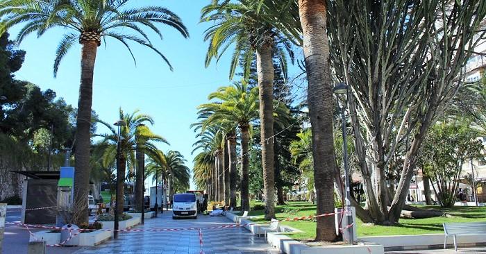 Poda y limpieza de las palmeras del paseo de Las Explanadas y tratamientos contra el picudo rojo.jpg