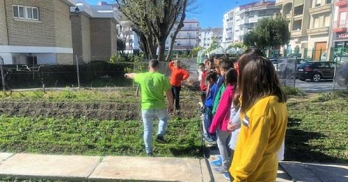 Sistema de riego por goteo para ahorrar hasta un 90% de agua en el huerto escolar del CEIP Mayor Zaragoza.jpg