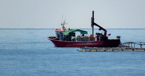 Acuicultura marina.png