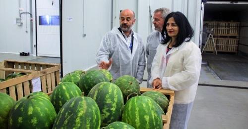 El Gobierno refuerza los servicios de Inspección de Sanidad Vegetal y Sanidad Exterior del Puerto de Motril.jpg