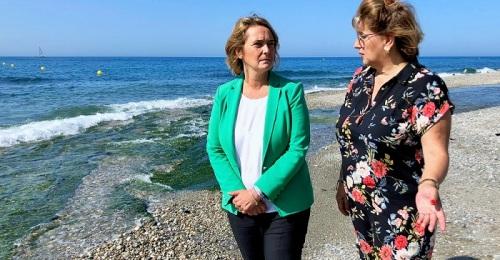 """Frente común de Motril y Carchuna-Calahonda para que Costas proteja sus playas """"de una vez por todas"""".jpg"""