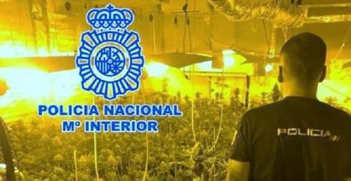 La Policía Nacional detiene a dos hombres por plantar marihuana en dos habitaciones de su vivienda en Padul.jpg
