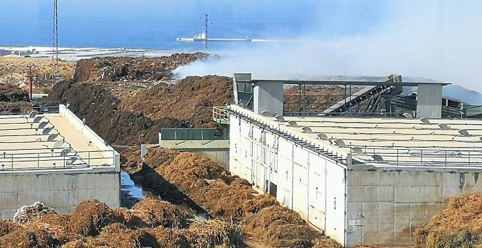 Controlado el incendio de la planta de residuos vegetales de Motril.jpg