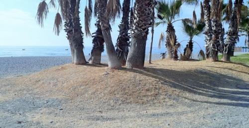 Oasis seco en la playa de Velilla de Almuñécar.jpg