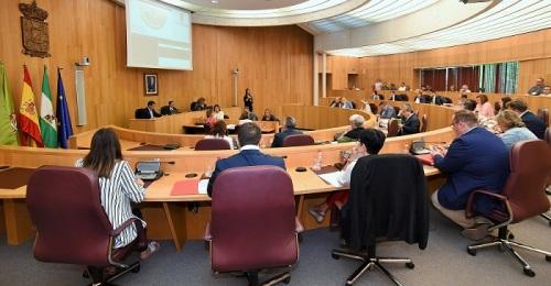 La Diputación en Pleno aprueba sacar a concurso el servicio de seguridad de 39 sedes de la institución.jpg