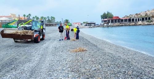 Operarios municipales limpian cañaveras y restos de pesca de las playas de Salobreña de cara al fin de semana.jpg
