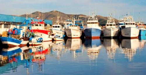 Pesca Motril.png