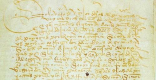 Ana María Carballeira publica un nuevo libro sobre los habices de la Alpujarra de 1530.jpg