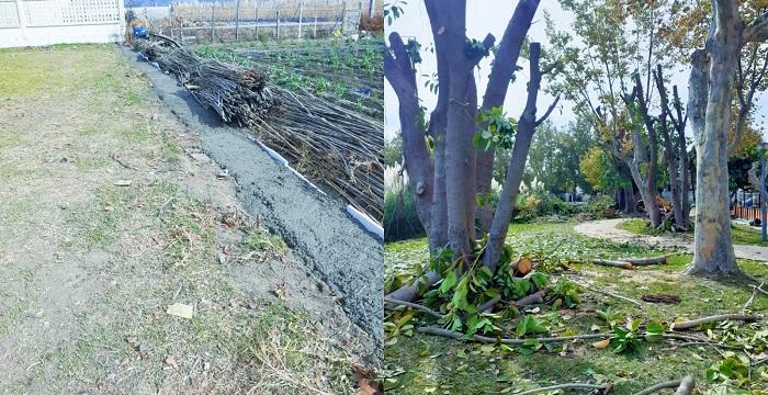 El Parque de la Fuente de Salobreña reabrirá a finales de noviembre.jpg
