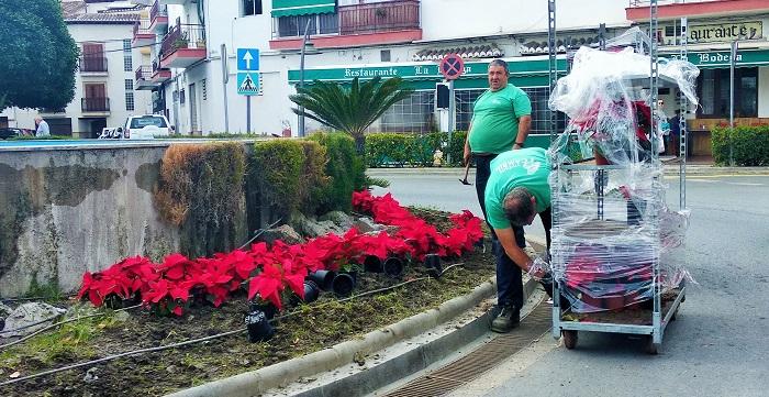 El Ayto. de Salobreña adorna con pascueros diversas zonas del municipio.jpg