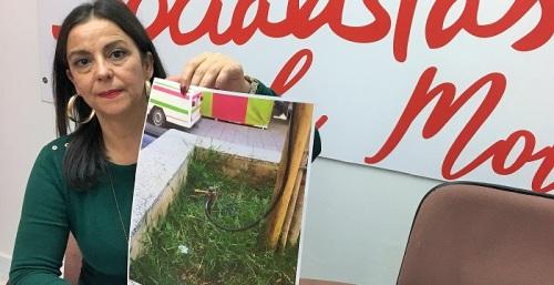 El PSOE pide que se retire la toma de tierra de las atracciones de la plaza de la Aurora, en una jardinera sin seguridad.jpg