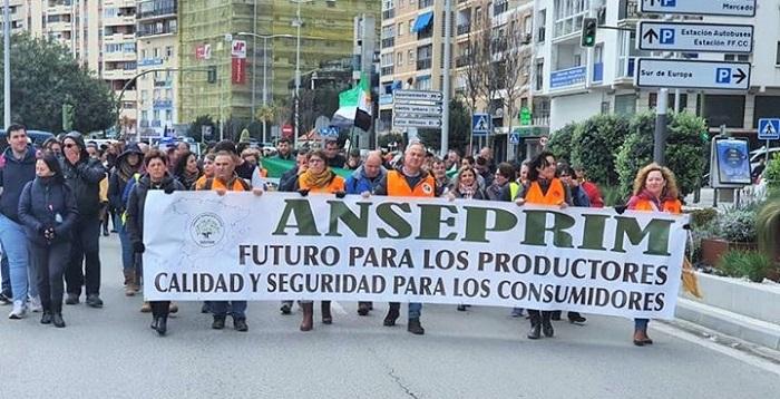 El PSOE de Carchuna y Calahonda acude a las movilizaciones de Algeciras