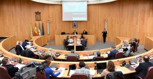 Pleno Diputación Granada enero 2020