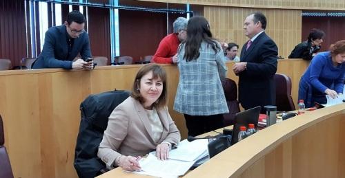 VOX insta a que la Junta de Andalucía y el Gobierno de España avalen la viabilidad del tren Granada-Motril