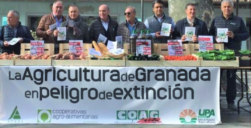 El sector agrario granadino se moviliza en protesta por la crisis de rentabilidad