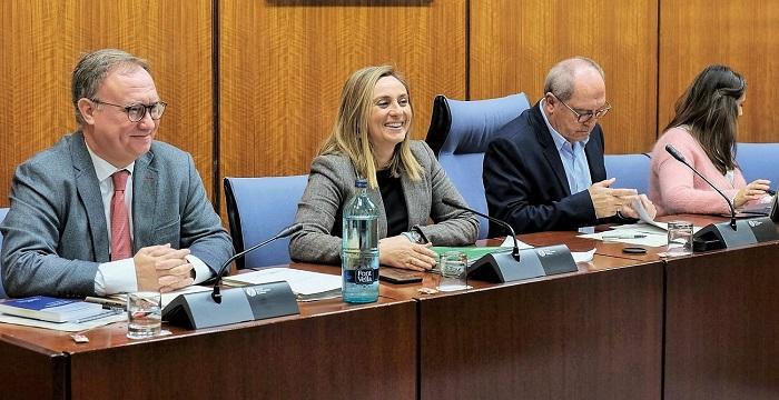 La remodelación del primer tramo del eje Arabial-Palencia se adjudicará en marzo