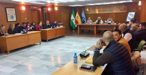 Pleno Ayuntamiento Almuñécar febrero 2020