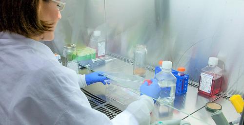 En marcha más de 30 nuevos proyectos de investigación contra el coronavirus