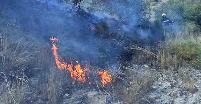 Los Bomberos de Almuñécar sofocan un incendio forestal en La Herradura