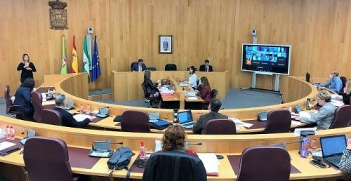 Pleno Diputación abril 2020