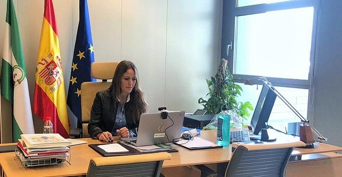 Videoconferencia Virginia Fernández delegada Economía