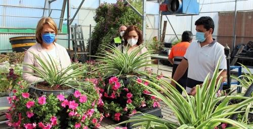 El vivero municipal de Motril pone a punto la nueva ornamentación vegetal y floral del Centro Comercial Abierto